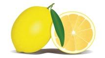 lemon-756390_1280
